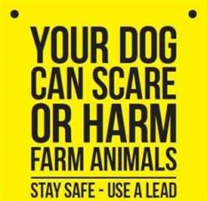 Please Follow the Countryside Code and Be A Responsible Dog Owner